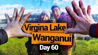 Wanganui Market & Virginia Lake - New Zealand's Biggest Gap Year – Backpacker Guide New Zealand
