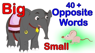 40  Opposite Words For Kids | Learning Videos For Preschool | Kindergarten Videos
