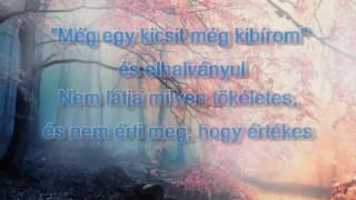 Alessia Cara   Scars To Your Beautiful (Magyar Felirattal)