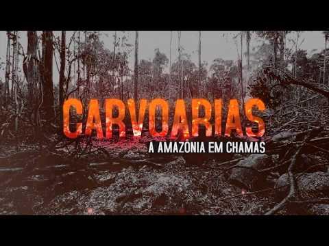 1º episódio da websérie conta a história dos carvoeiros clandestinos da Floresta Amazônica