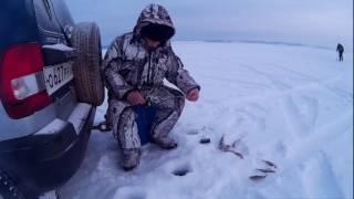Безынерционная катушка зимой