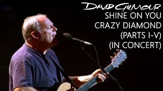 David Gilmour   Shine On You Crazy Diamond (Parts I–V) (In Concert)