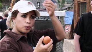 Testing the Coriolis Effect in Ecuador // Jet Set Zero