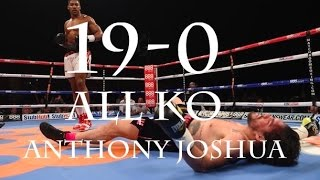 2017 Anthony Joshua 19-0 All Knockouts
