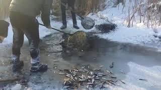Зимняя рыбалка (задуха рыбы)