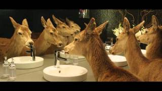 """Tooheys Extra Dry """"Nocturnal Migration"""" TVC - AdNews"""