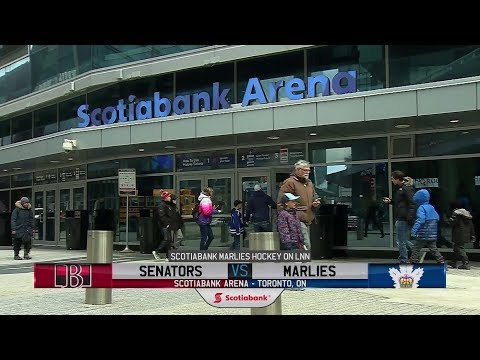 Senators vs. Marlies | Mar. 11, 2019