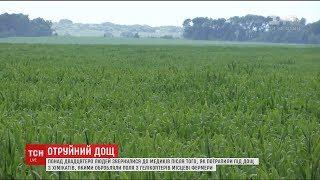 На Житомирщині пройшов отруйний дощ