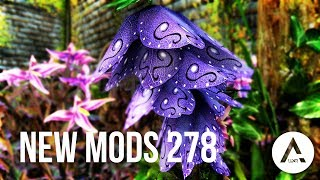 5 Brand New Console Mods 278 - Skyrim Special Edition (PS4/XB1/PC)