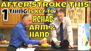After Stroke This 1 Thing Is Key to Rehab Arm & Hand