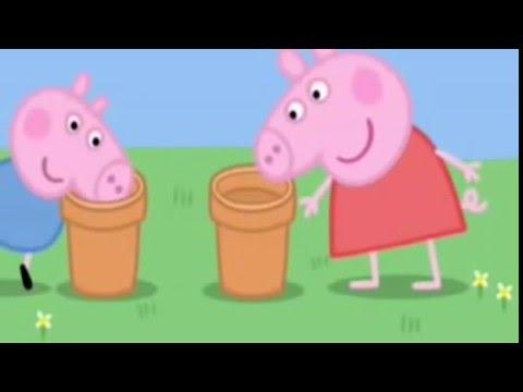 Die Erscheinungsformen der Würmer der Kinder