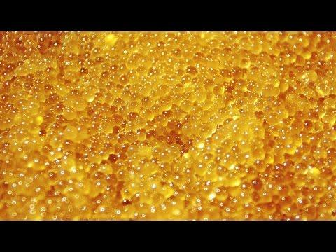 Кто лечит гепатиты в алматы