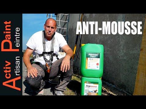 Nettoyage Toiture Javel