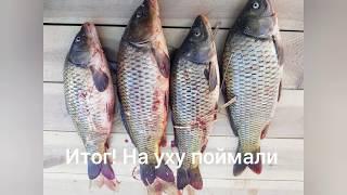 Рыбалка началась с воблы леща а завершилась уловом сазана