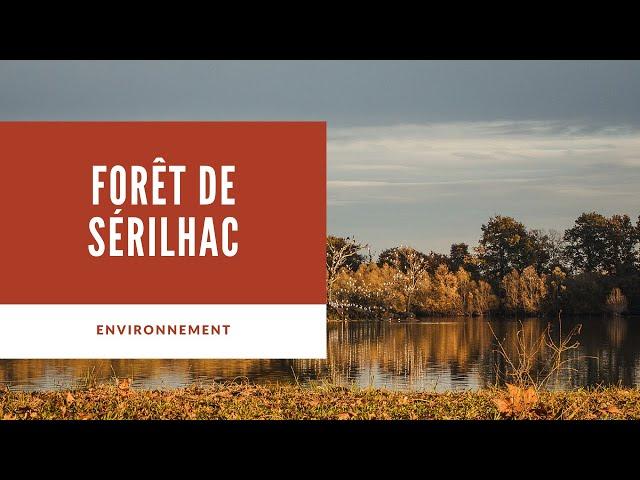 Forêt de Sérilhac