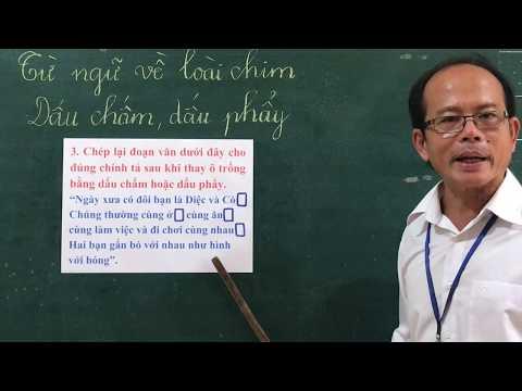 Môn LTVC lớp 2, bài Từ ngữ về loài chim. Dấu chấm, dấu phẩy (GV Dương Tấn Thạnh, Trường TH C Phú Mỹ)