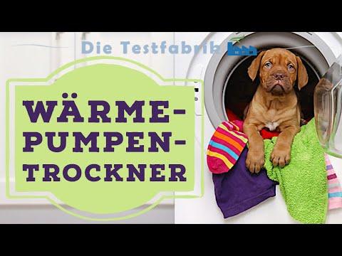 Werner single
