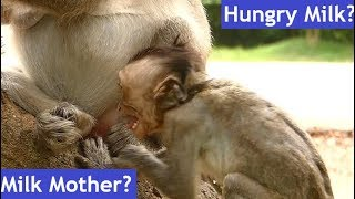 Julina Baby Growth| Sound Very Sad Baby Julina Crying & Angry Mother No Feeding| Mother Weaning Baby