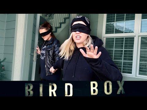 24 Hour Bird Box Challenge