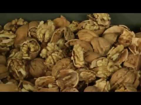 Линия для переработки грецкого ореха.Продажа оборудования.