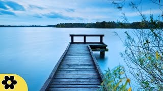 Meditation, Healing Music, Relaxation Music, Chakra, Relaxing Music for Stress Relief, Relax, ✿630C