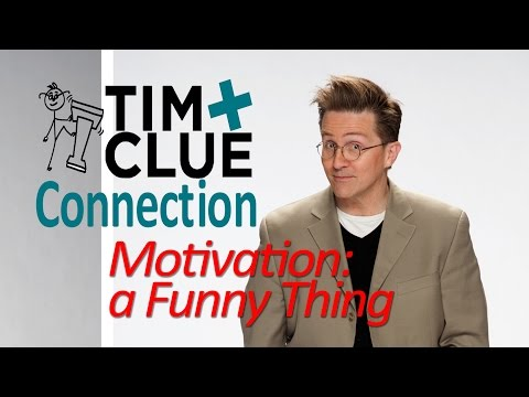 Sample video for Tim Clue