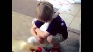 Курица , которая любит обниматься