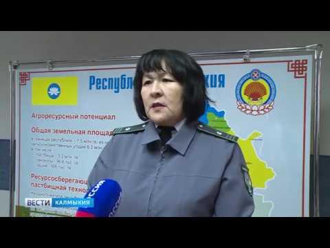 Россельхознадзора провел в Калмыкии совещание по вопросу внедрения электронной ветеринарной сертификации