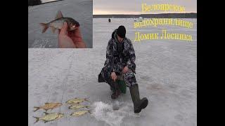 Где клюет рыба на белоярском водохранилище