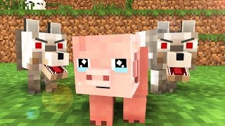 Pig Life   Minecraft Animation