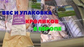 Мясо кролика в магазинах Европы