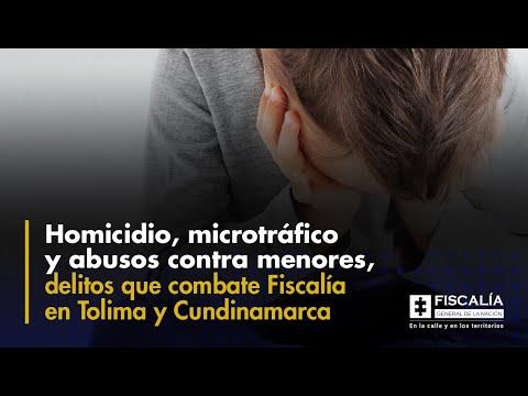 Fiscal Francisco Barbosa: Fiscalía combate en Tolima y Cundinamarca delitos de alto impacto