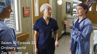 Grey's Anatomy S10E21   Ordinary World   Joy Williams
