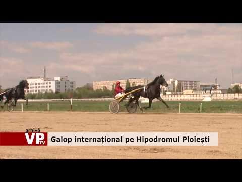 Galop internațional pe Hipodromul Ploiești