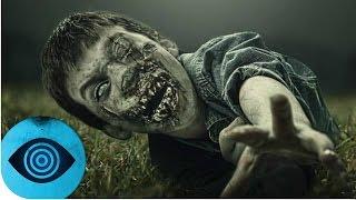 Kann The Walking Dead Wirklich Passieren?
