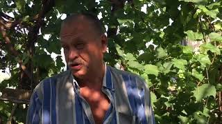 Турбазы в Калаче на Дону