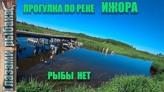 Отчеты с рыбалок в ленинградской области
