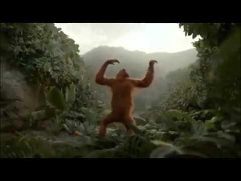 Oppa gangnam style Monkey version