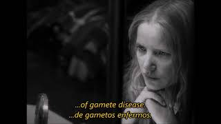Damien Rice | The Professor & La fille Danse [Subtitulada al español]