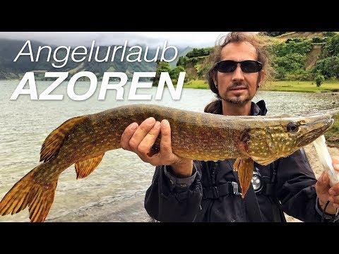 Fiskeri på Azorerne