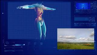 317.83 hz Liver Frequency & tonic [TUNING FORKS SERIES] ❁ Isochronic ☯ PURE BRAINWAVE ENTRAINMENT