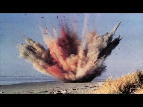The Disastrous exploding Whale of Florence, Oregon (2019) - A 3 Minute Short on why using a Half-Ton of dynamite to blow up a Whale is a bad idea