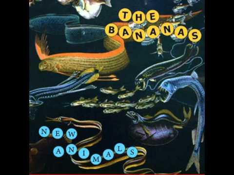 The Bananas- Time Bandits