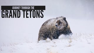 Grand Teton National Park Adventure-Grizzly Sightings