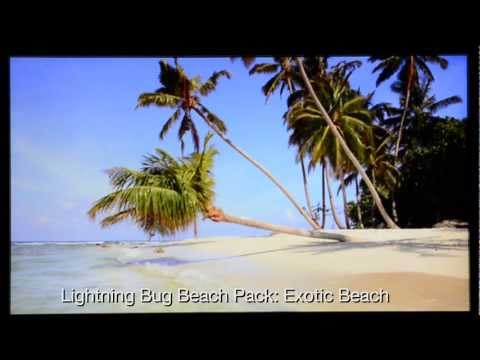 Video of Lightning Bug - Beach Pack