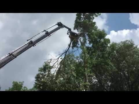 Altec: Heartland demo