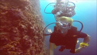 Dykning Ved Koh Phi Phi