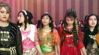رقص زیبای کوردی در مریوان Marivan