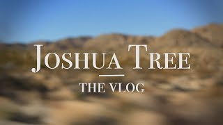 Joshua Tree - The Vlog