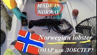 Как одеться для рыбалки на норвежском море в ноябре